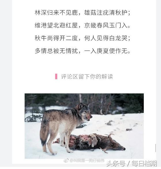 卓伟附诗爆料鹿晗前妻躲香港暗自悲伤,预言关鹿两人明年夏天分手