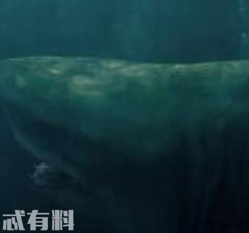 巨齿鲨的原型是什么厉害吗 电影是根据小说改编的吗