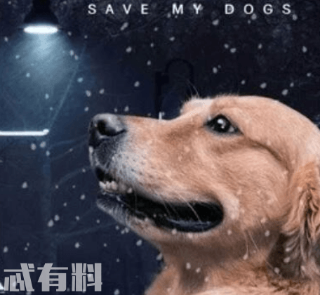 忠犬大营救好看吗什么时候上映 影片主要讲述了什么故事