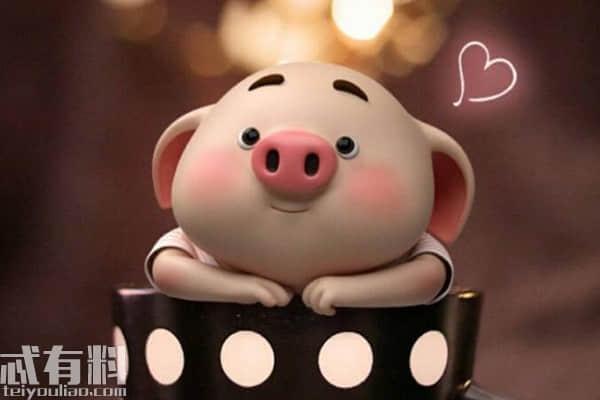 猪年春节祝福成语有哪些?猪年有哪些简短祝福